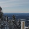 Tremblant Trail Review: Taschereau, South Side