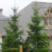Tremblant Resort Review: Les Falaises, Sunstar