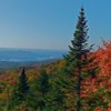 Tremblant Fall. The Painted Mountain.