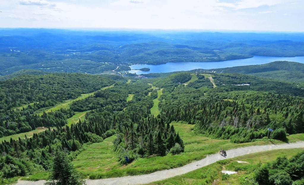 7-31-16-summit-observation-deck-views-lac-t-dragonflies-over-trail-c